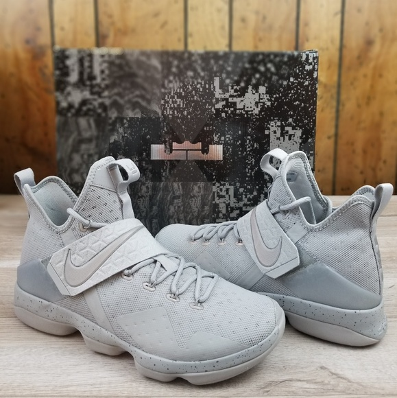 b86443c8ff8a Nike Lebron James XIV Silver Refect Silver size 11